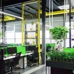 Superplants Interior