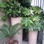 Exterior Containers by Superplants