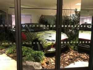 Aston Martin Hire Woodland Theme
