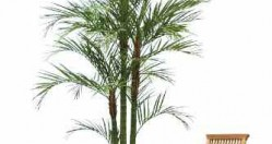 Artificial Areca Palm Offer