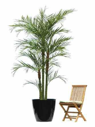 Artificial Areca Palm Offer