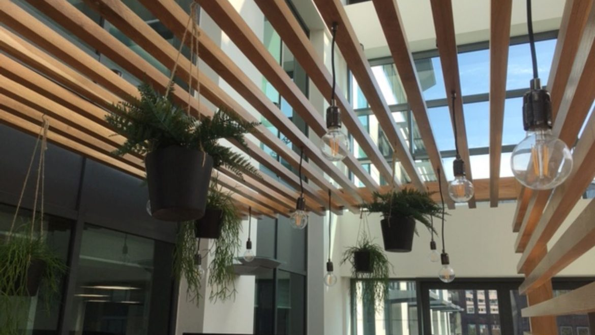 Artificial Planting for the Workplace