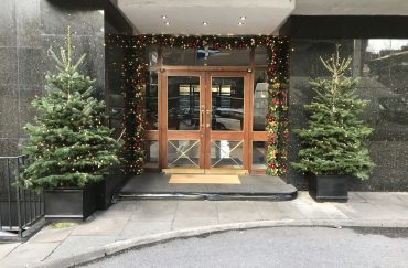 Exterior Decorated Christmas Tree Hire