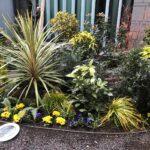 Seasonal Planting Superplants