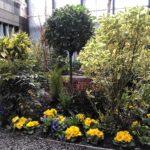 One Hyde Courtyard 2021