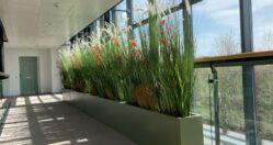 Interior Artificial Planters